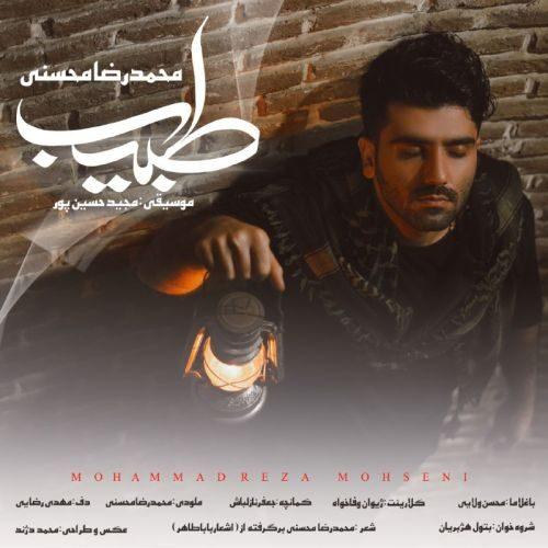 دانلود آهنگ جدید محمد رضا محسنی طبیب