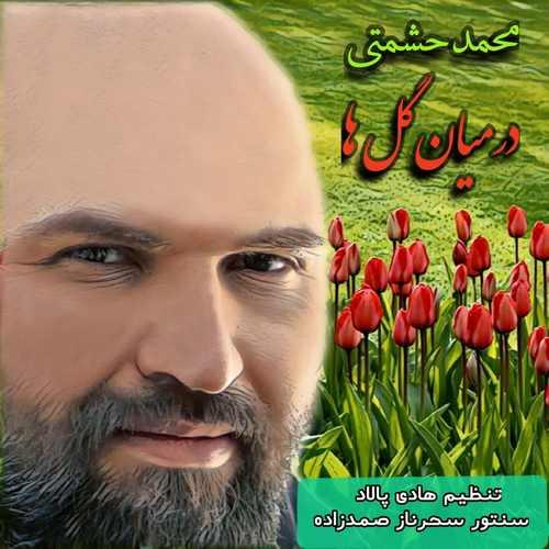 دانلود آهنگ محمد حشمتی در میان گلها
