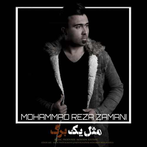 دانلود آهنگ محمد رضا زمانی مثل یه برگ